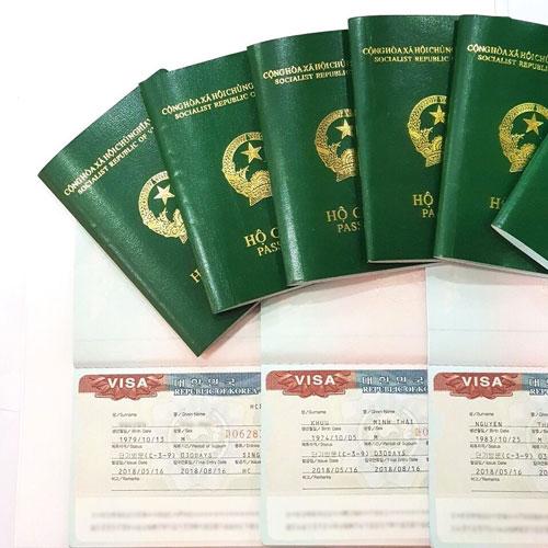 dịch vụ visa du học